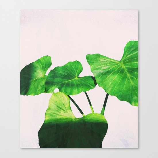 Taro Dimensionality #society6 #decor #buyart Canvas Print