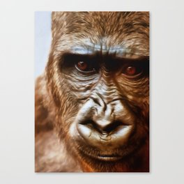 COMPASSION OF THE GORILLA Canvas Print