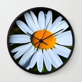 Wild Daisy Overflowing with Pollen Wall Clock
