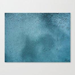 The Drops Canvas Print