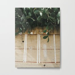 Indian Fig Cacti Metal Print