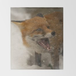Wild Red Fox In The Snow Throw Blanket