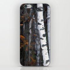 8112 iPhone & iPod Skin