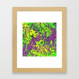 Funky Zebra Framed Art Print