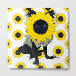 Chihuahua Dog Sunflower  Metal Print