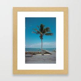 Scuba School Belize Palm Framed Art Print