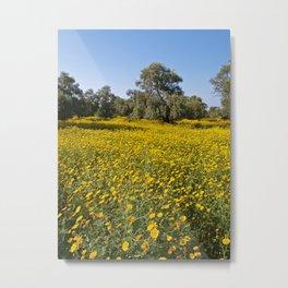 Cyprus Wildflower Meadow Metal Print
