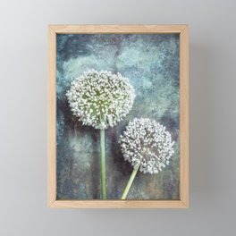 Allium Flowers Framed Mini Art Print