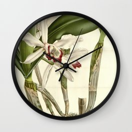 Flower laelia stelzneriana Wall Clock