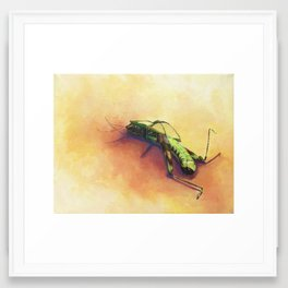 Insect death Framed Art Print