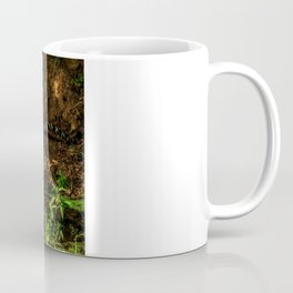 The Royal Bengal Tiger ( Coffee Mug