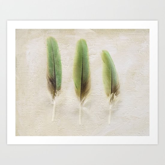 Green Feathers Art Print