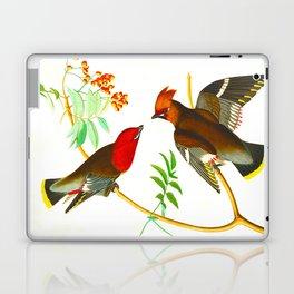 Bohemian Chatterer Bird Laptop & iPad Skin