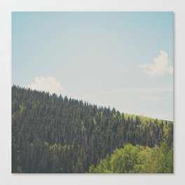 above the tree line ... Canvas Print