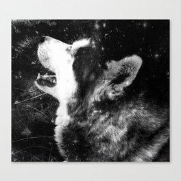 Siberian Husky - my shining star Canvas Print