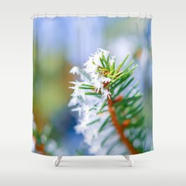 Bitter Cold, Ice On A Spruce Tree Branch Shower Curtain