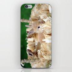 Bunnies In A Basket... iPhone & iPod Skin