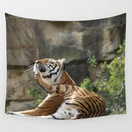 Chin-scratching tiger Wall Tapestry