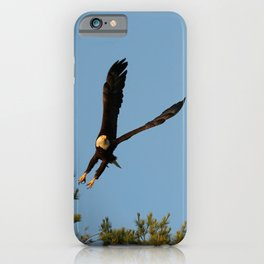 The Crow And Bald Eagle iPhone Case