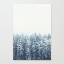 Frosty feelings Canvas Print