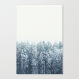 Frosty feelings Canvas Print
