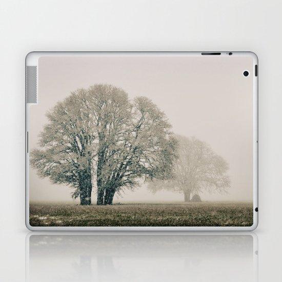 Enduring Winter Laptop & iPad Skin