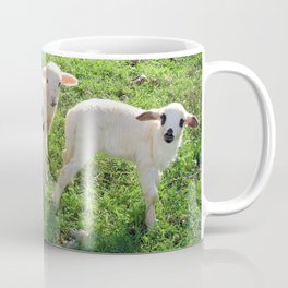 Three Cute Spring Lambs Coffee Mug