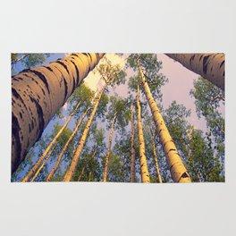 Aspen Trees Against Sky Rug