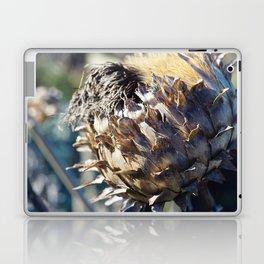 Seed Head Laptop & iPad Skin