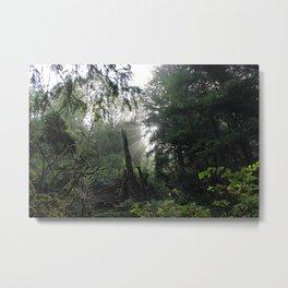 Forest Magic Metal Print