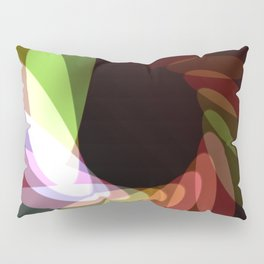 Elliptical Motion Pillow Sham