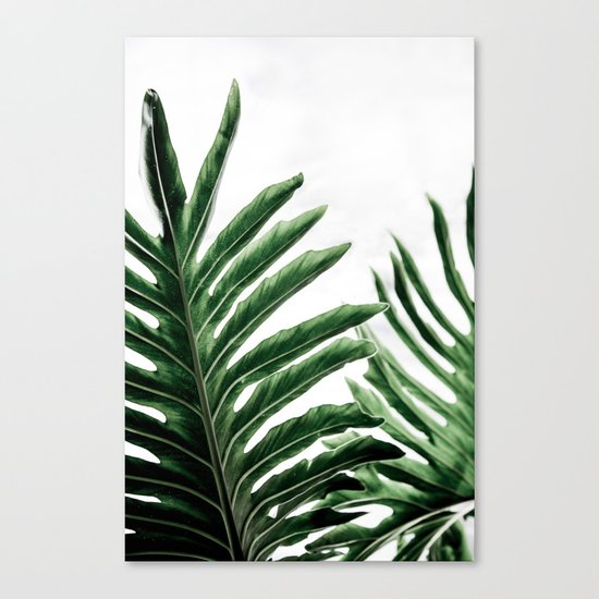 Leaves 1 Canvas Print