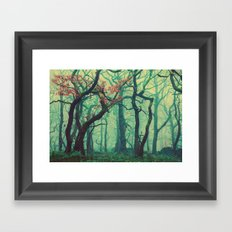 Tall Tree Tales Framed Art Print