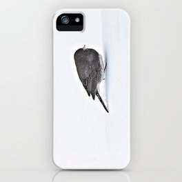 Long Journey Junco iPhone Case