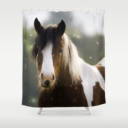 Pony and flies Shower Curtain