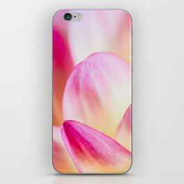 Dahlia in Pink iPhone Skin