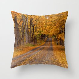 Fall Rural Country Road Throw Pillow