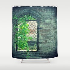 Window of Abandonment  Shower Curtain