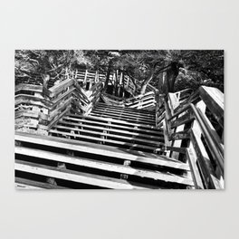 Zig zag stairs Canvas Print