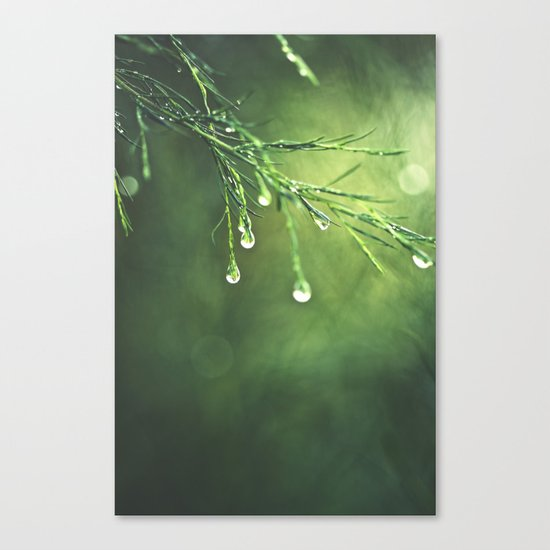Relic of a Rainy Day Canvas Print