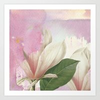 magnolia Art Prints featuring magnolia by clemm
