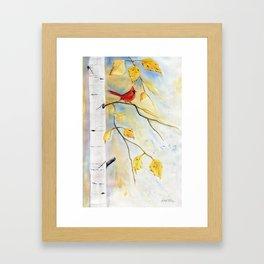 Cardinal on birch Tree Framed Art Print