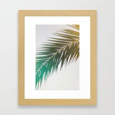 palm tree Framed Art Print