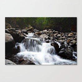 four waters of iao valley Canvas Print