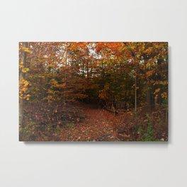Autumn decor Metal Print
