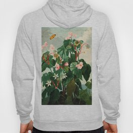 Pink Floral The Oblique-Leaved Begonias : Temple of Flora Hoody