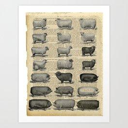 Book Art Page Sheep & Pigs Art Print