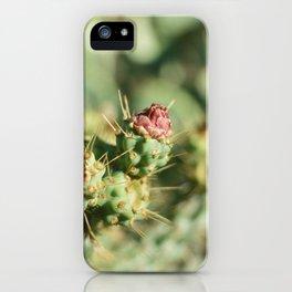 Cactus Bud Focused Ektar  iPhone Case