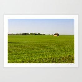 grass or cereals, Art Print