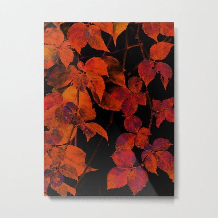 It's Fall II Metal Print